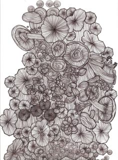 fungus and mushroom line drawing by Darci Madlung www.dprojectdesign.com black pen and ink on transparency, zentangle organic style freehand drawing