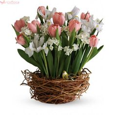 Something Special with Flowers - Eshopclub Same Day Flower Delivery - Fresh Flowers - Wedding Flowers Bouquets - Birthday Flowers - Send Flowers - Flower Arrangements Easter Flowers, Mothers Day Flowers, Iris Flowers, Spring Flowers, Send Flowers, Tulpen Arrangements, Floral Arrangements, Flower Arrangement, Tulip Bouquet