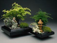 http://gardenslovers.tumblr.com/post/31864495145/bonsai-care #bonsai http://www.roanokemyhomesweethome.com