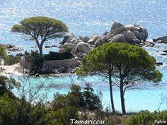 Tamaricciu / Corse