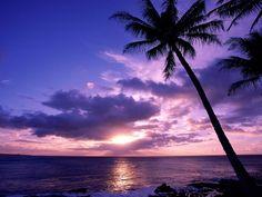 Paraíso Taitiano
