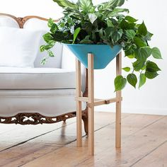 Matchstick Planter - Tall