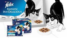 Amostras Grátis: FELIX Fantastic Duo Delicious