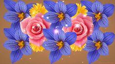 С Днем святого Валентина! Rose, Day, Flowers, Plants, Pink, Roses, Flora, Plant, Royal Icing Flowers