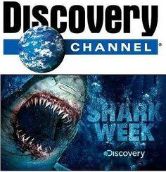 shark week 2012!