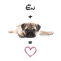 Mopsz szabályok - a békés együttélésért vagyis a mopsz kényelméért Dogs, Movie Posters, Pet Dogs, Film Poster, Doggies, Billboard, Film Posters
