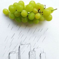 Grapefruit for the rain