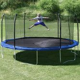 Found it at Wayfair - 17' x 15' Oval Trampoline with Safety Enclosure