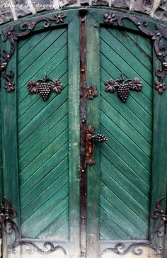 Door, Eger, Hungary by Cristina Horvath