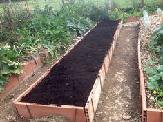 Plantar, Grass, Pallets, Nature, Gardening, Vegetables Garden, Vegetable Garden, Growing Up, Drawers