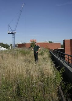 Green roofs may be a source of pollution: The study roof with Dr Speak holding an anenometer