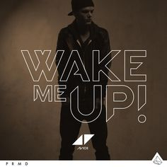 I LOVE THIS! <3 #wakemeup #avicii My favorite song as of right now! <3