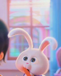 Cute Bunny Cartoon, Cute Cartoon Pictures, Pikachu Art, Cute Pikachu, Cute Disney Wallpaper, Cute Cartoon Wallpapers, Disney Princess Pictures, Disney Princess Drawings, Cartoon Eyes Drawing