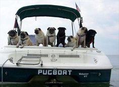 Creatively Funny Boat Names – 22 Pics