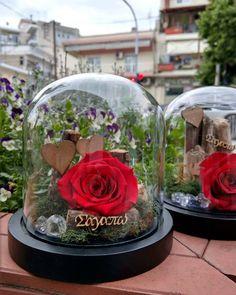 ❤ Love is all around ❤ Forever Roses ❤  Red Passion Roses ❤  #redroses #red #flowers #instalove #instamoment #instaflower #decoflowers #foreverroses #lastsforever #flowerlovers #loveisallaround #love  Για περισσότερες πληροφορίες και διαθεσιμότητα προϊόντων στείλτε μας προσωπικό μήνυμα ❤ Forever Rose, Roses, Table Decorations, Home Decor, Decoration Home, Pink, Room Decor, Rose, Home Interior Design