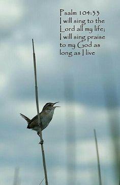 Vou cantar a Jeová  por toda minha vida!