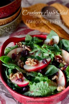 Cranberry Apple Walnut Salad