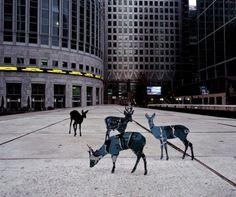 Maslen & Mehra installation art