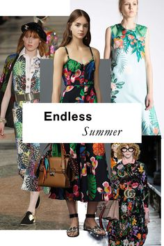Palm fronds, hibiscus, and parrots, oh my! Full-throttle tropical exuberance has never looked fresher.
