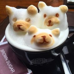 The Three Bears  in a Cup ☕️☕️☕️