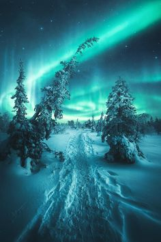 hintergrundbilder natur See the Northern Lights Beautiful Sky, Beautiful Landscapes, Beautiful World, Beautiful Places, Nature Pictures, Cool Pictures, Landscape Photography, Nature Photography, Photography Jobs