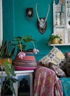 Urban Jungle Bloggers - one plant three styles from Janice Issitt Life & Style.