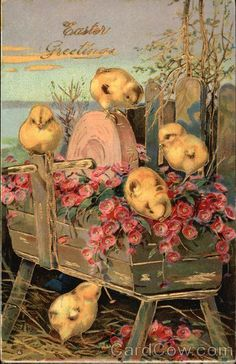 Easter Greetings With Chicks..Love This!
