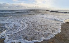 Sea-levels are rising 60 per cent faster than the Intergovernmental Panel on Climate Change's (IPCC) projections