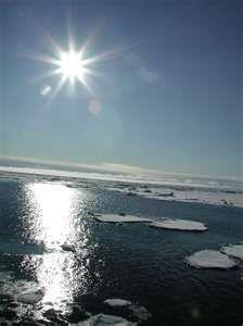 arctic.