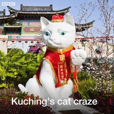 No-one knows why Kuching was named after a cat, but residents of this Malaysian city can't seem to get enough of fluffy felines.   Full text: http://bbc.in/2ys1c7Z #flights & #hotels #Cruises #RentalCars #mexico #lajolla #nyc #sandiego #sky #clouds #beach #food #nature #sunset #night #love #harmonyoftheseas #funny #amazing #awesome #yum #cute #luxury #running #hiking #flying