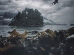 Jug Island and some kayakers on a very rainy weekend. West Coast, Mountains, Landscape, Nature, Travel, Islands, Scenery, Historia, Naturaleza
