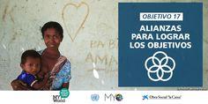 Alianzas para lograr los objetivos: objetivo nº 17 de desarrollo sostenible (ODS).