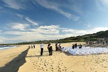 Tie the knot at izotsha creek estate in shelly beach Beach Ceremony, Rock Pools, Wedding Reception Venues, Destination Wedding, Wedding Beach, Coast, Kwazulu Natal, Outdoor, Sony
