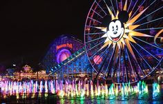 Disney world theme park