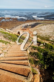 blur in south africa coastline indian ocean near the cape of good hope and bush Blur, Royalty Free Images, South Africa, Cape, Ocean, Indian, Stock Photos, Nature, Outdoor
