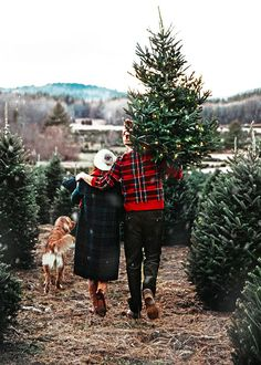 christmas tree photography 31 Very Merry Christmas Photo Ideas for Couples - Christmas Tree Pictures, Merry Christmas Photos, Real Christmas Tree, Christmas Couple, Christmas Mood, Very Merry Christmas, Noel Christmas, Little Christmas, Outdoor Christmas