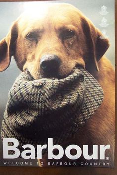 label of the day ~ barbour  so sporting, so english country estate, so & ivy barbour favorite picks…