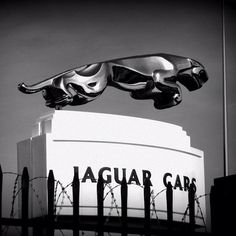 Jaguar – One Stop Classic Car News & Tips Jaguar S Type, Jaguar Cars, Car Hood Ornaments, Jaguar Daimler, Best Classic Cars, E Type, Diy Car, Car Tuning, Hot Cars