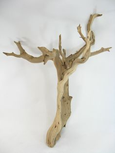 "Natural Ghostwood Branches Sanded 16- 22"" $16.69"