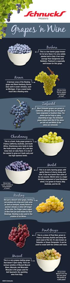 Why not learn a little more about what grapes make which wine with this infographic! #Schnucks #winetasting