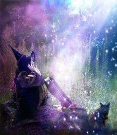 To sleep, perchance to dream.