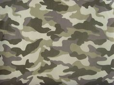 The U.S. Army camouflage pattern development effort is a four-phase procurement plan to develop and field a successor to the Universal…