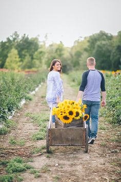 Alex and Dave during their countryside, sunflower engagement session in Sussex, NJ. Captured by NJ wedding photographer Ben Lau.