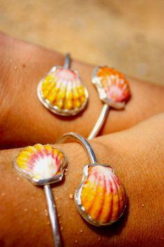 Sunrise seashells Hawaii