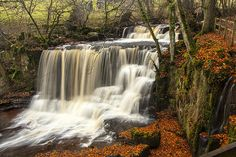 Crackpot Falls in Autumn time East Yorkshire, Yorkshire Dales, Yorkshire England, British Holidays, Photography Tutorials, Photography Lessons, Britain Uk, Kingdom Of Great Britain, Places Of Interest