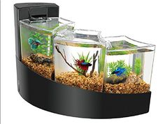 Relax to the calming presence of cascading water while admiring the natural beauty of betta. Aqueon Betta Falls are available in black or white. Compact enough to make an elegant statement anywhere in your home or office.