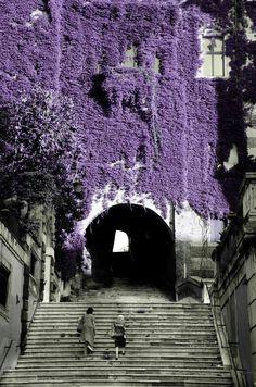 Picturesque Salita dei Borgia in Rome, Italy