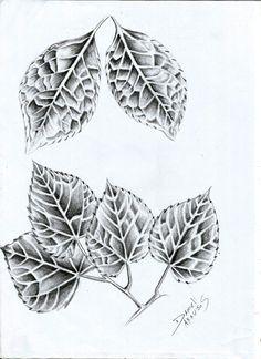 Estudo Rabisco ..Praticando Textura Folhas = D