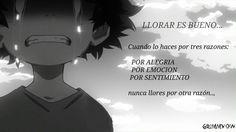 boku no hero academia frases anime espanól