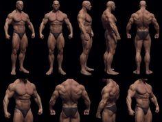 [转载]3D人体精模